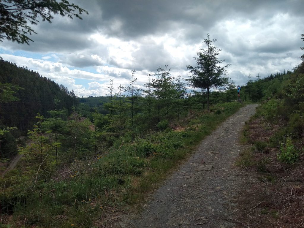 extratrail  Malmedy -  parcours rouge